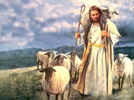 Jesus Gets the Lost Sheep